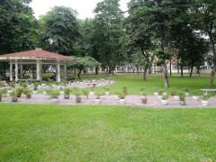 Парк Тонг Нхат