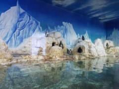 Океанариум Times City